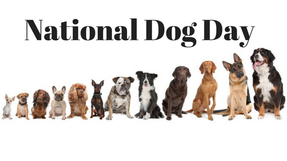 Break Out the Treats!  It's National Dog Day!