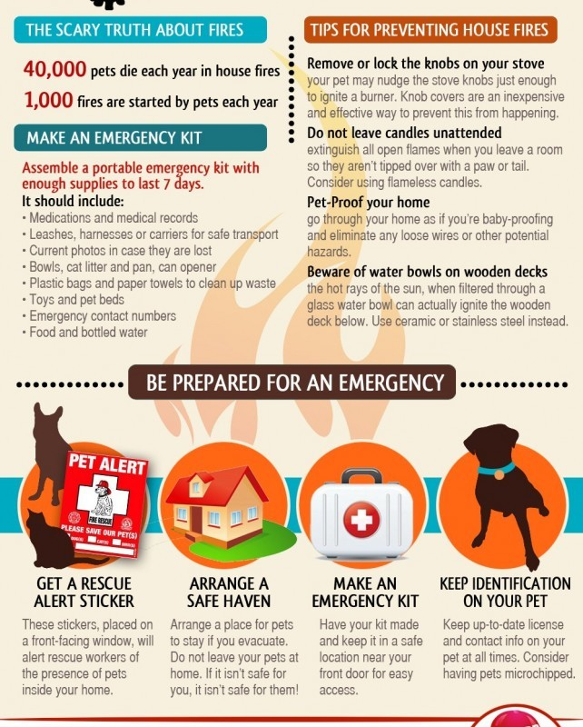 Pet Fire Safety (Infographic)