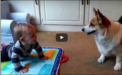 Play With Me….Now! (Video)