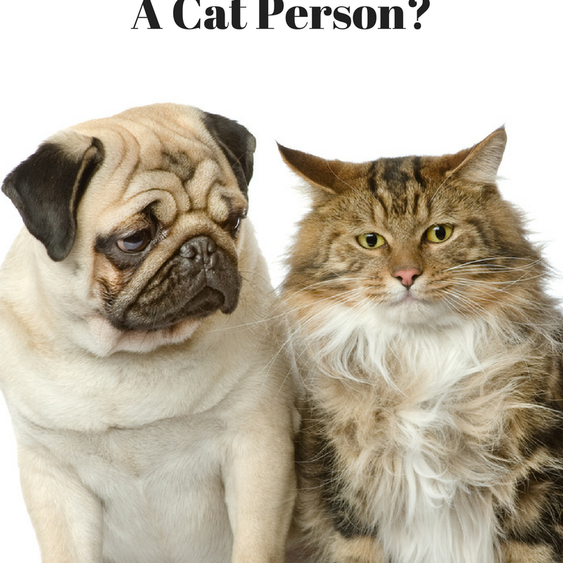 Could Your Personality Have Something to Do With Your Choice of Pets?